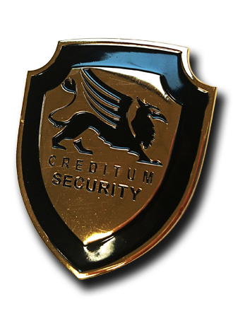Creditum Security Pin
